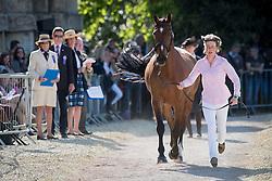 Gilruth Emily, (GBR), Topwood Beau<br /> CCI4* - Mitsubishi Motors Badminton Horse Trials 2016<br /> © Hippo Foto - Jon Stroud<br /> 06/05/16