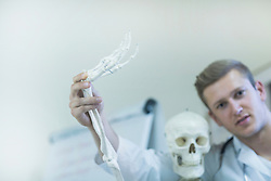 Portrait of a young doctor waving skeleton's hand in doctor's office, Freiburg Im Breisgau, Baden-Württemberg, Germany