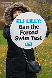 Bracknell, UK. 29 October, 2020. A PETA supporter protests outside Eli Lilly's R&D centre to call on the US pharmaceutical company to ban the forced swim test. Animal rights charity PETA UK contends that the forced swim test during which small animals are dosed with an anti-depressant drug, placed in inescapable beakers filled with water and forced to swim to keep from drowning has been widely discredited and that other pharmaceutical companies including Johnson & Johnson, GlaxoSmithKline, Pfizer, Bayer, Roche and AstraZeneca have banned it.