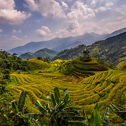Rice Fields and landscape near Dong Van, Ha Giang Province, North Vietname
