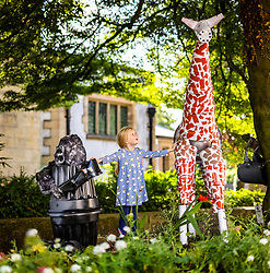 © Licensed to London News Pictures. 26/07/2021. Settle UK. 6 year old Scarlet plays with a Giraffe & a Gorilla made entirely of flowerpots this morning at the Settle Flowerpot festival which runs from July to August in the Yorkshire market town. Photo credit: Andrew McCaren/LNP