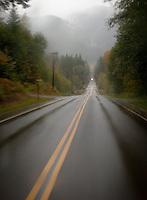 a foggy rainy dreary day along a rural highway
