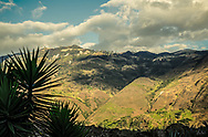 An image of the Andes foothills with dramatic clouds, Yuccas in the foreground.