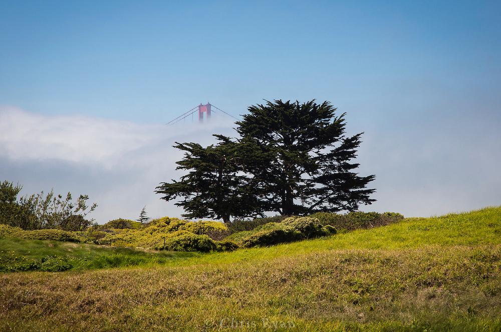 Golden Gate Bridge tower peeking through the fog, San Francisco, California
