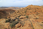 View from Mirador del Risco de las Penas, Fuerteventura, Canary Islands, Spain