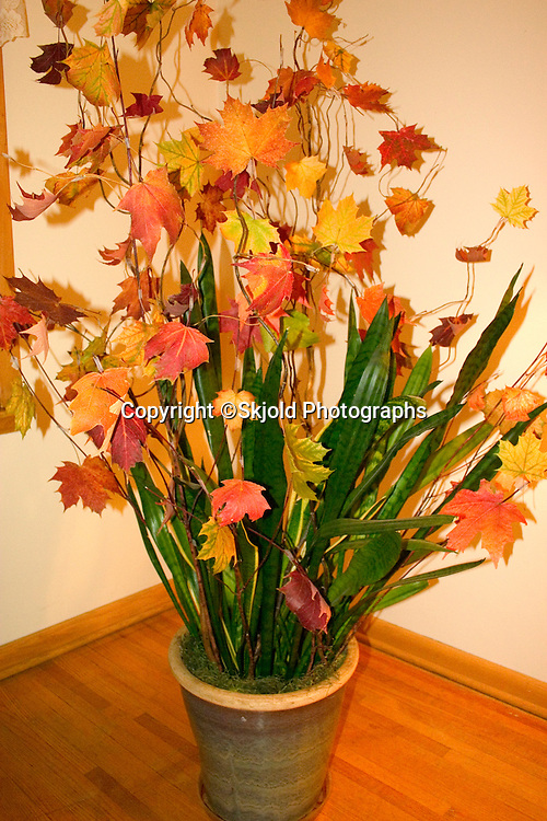 Myra's autumn foliage decoration that she had artistically assembled and placed in the front of hair salon.  St Paul Minnesota USA