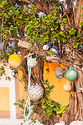 Fishing net floats decorate a tree in New Plymouth on Green Turtle Cay, Bahamas.
