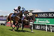Jockey Luke Morris rides Jazri to victory in the 3.50 race at Brighton Racecourse, Brighton & Hove, United Kingdom on 10 June 2015. Photo by Bennett Dean.