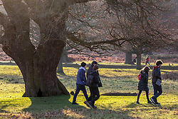 © Licensed to London News Pictures. 29/12/2019. London, UK. Walkers and families enjoy unseasonably warm weather in Richmond Park as weather forecasters predict the warmest New Year's Eve for years. Photo credit: Alex Lentati/LNP