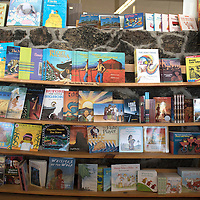 Butler's in Gallup has a book nook with books for all ages including a wide array of art books.