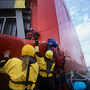 Greenpeace volunteers in kayaks, speed boats and climbers on the jetty prevent the 23,498-tonne cargo ship Elbe Highway from docking at Sheerness in the Thames Estuary. The cargo ship is bringing Volkswagen diesel cars into the UK and the Greenpeace action is to prevent this from happening and to make VW ditch diesel. Two climbers board the ship and hang a banner on the roll-on roll-off part of the ship preventing any cars from being off-loaded.