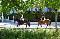 Out for a Sunday canter in surburbs of San Pedro de Alcanatara, near Marbella, Spain, 15th April 2018, 201804154327<br />