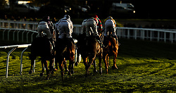 Runners take the bend in the Junior Jumpers Novices' hurdle race during day two of the Showcase at Cheltenham Racecourse