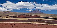 VOLCAN PAYUN LISO (3.833 m.s.n.m.) Y CERROS PINTURA, SUELO MULTICOLOR DE PIEDRAS VOLCANICAS Y ESTEPA DE COIRONES (Festuca gracillima - fam. poaceas), RESERVA PROVINCIAL LA PAYUNIA (PAYUN, PAYEN), MALARGUE, PROVINCIA DE MENDOZA, ARGENTINA (PHOTO © MARCO GUOLI - ALL RIGHTS RESERVED)