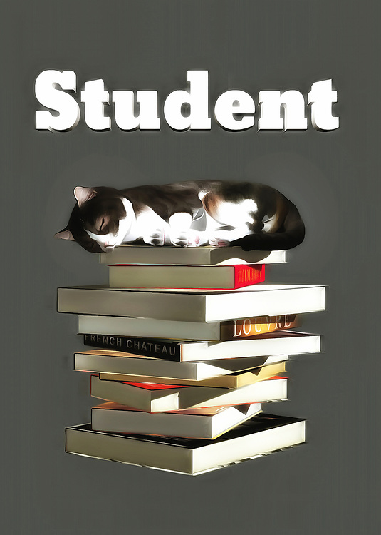 This is a fine art piece that is definitely going to appeal to anyone who has gone through college. If you know a thing or two about late nights, lugging books around, and studying well into the early hours of the morning, then you will definitely relate to everything in this piece. You are going to note that the adorable cat in this piece has likely been studying for a long time. We can see that it is fast asleep on top of a pile of books. A piece such as this can make for a welcome addition to any space. .<br /> <br /> BUY THIS PRINT AT<br /> <br /> FINE ART AMERICA<br /> ENGLISH<br /> https://janke.pixels.com/featured/student-jan-keteleer.html<br /> <br /> WADM / OH MY PRINTS<br /> DUTCH / FRENCH / GERMAN<br /> https://www.werkaandemuur.nl/nl/shopwerk/Katten-Kat-student/436591/134