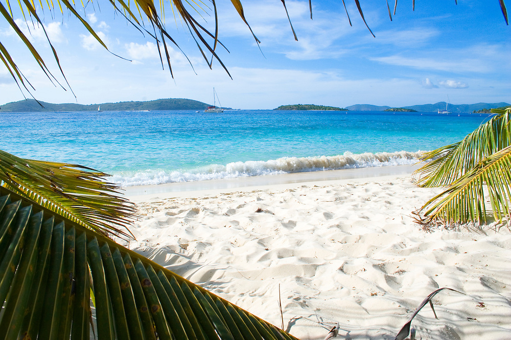 Beach framed by palms, looking out over Solomon Bay, Saint John, U.S. Virgin Islands in the Caribbean.