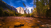 Evening light on El Capitan from the Merced River, Yosemite National Park, California USA