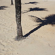 Shadows of palm trees on Ipanema beach, Rio de Janeiro,  Brazil. 6th July 2010. Photo Tim Clayton..