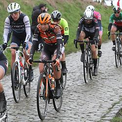 29-02-2020: Wielrennen: Omloop Nieuwsblad: Ninove: Eva Buurman