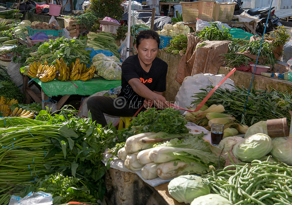 Selling vegetables at Tomohon extreme market, north Sulawesi, Indonesia.