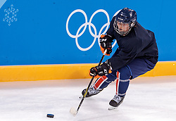 08-02-2018 KOR: Olympic Games day -1, Pyeongchang<br /> Overview during a practice session of the korean woman ice hockey team ahead of the opening of the Pyeongchang 2018 Winter Olympic Games at the Pyeongchang, South Korea on 2018/02/05<br /> <br /> *** USE NETHERLANDS ONLY ***