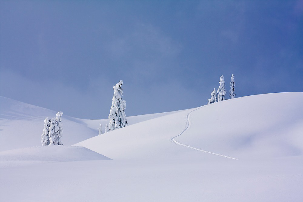Ski tracks over undulating terrain in the Mount Baker backcountry along the classic ski tour around Table Mountain, Mount Baker-Snoqualmie National Forest, Washington.