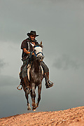 Vaquero (Cowboy) on horseback<br />