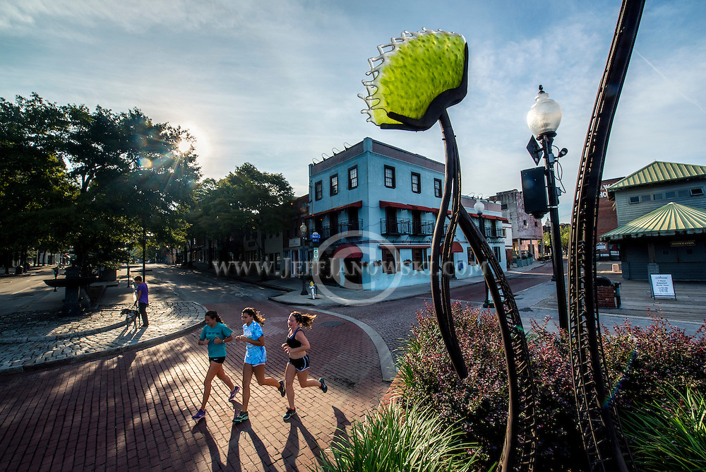 """Metal-glass sculpture created by Paul Hill of a giant Venus Fly Trap named """"Southern Hospitality"""" is a permanent fixture at the end of Market Street along the Cape Fear Riverwalk.  PHOTO BY:  JEFF JANOWSKI PHOTOGRAPHY"""