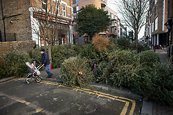 © Licensed to London News Pictures. 07/01/2021. London, UK. A man pushes a pram through piles of Christmas tress at a recycling point in Kensal Green, West London, which haven't been collected during a third national Lockdown. Photo credit: Ben Cawthra/LNP