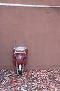 Red Wheelbarrow, Adobe Wall, Fall Leaves, Fresh Snow, gravel driveway, Santa Fe New Mexico, Southwest, red leaves, yellow leaves, orange leaves, maple leaves