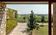 iTALY, Franciacorta , Barone Pizzini vineyard