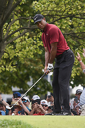 August 12, 2018 - Town And Country, Missouri, U.S - TIGER WOODS from Jupiter Florida, USA  gets ready to tee off on hole two during round four of the 100th PGA Championship on Sunday, August 12, 2018, held at Bellerive Country Club in Town and Country, MO (Photo credit Richard Ulreich / ZUMA Press) (Credit Image: © Richard Ulreich via ZUMA Wire)
