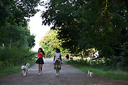 "Girls walking their dogs. Hampstead Heath (locally known as ""the Heath"") is a large, ancient London park, covering 320 hectares (790 acres). This grassy public space is one of the highest points in London, running from Hampstead to Highgate. The Heath is rambling and hilly, embracing ponds, recent and ancient woodlands."