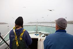 Early Morning Departure Out Of Santa Cruz Harbor