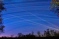 Star and jet trails. Southern view from my backyard. Composite of images taken with a Nikon D810a camera and 24 mm f/3.5 PC-E lens (ISO 200, 24 mm, f/5.6, 120 sec).
