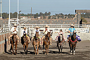 Members of the famous Franco Family of charros ride together on horseback at the family Charreria practice session in the Jalisco Highlands town of Capilla de Guadalupe, Mexico. The Franco family has dominated Mexican rodeo for 40-years and has won three national championships, five second places and five third places. Left to right are: Luis Alfonso Franco Gonzalez, Luis Alfonso Franco Jimenez, Juan Franco de Anda, Juan Franco Gonzalez, Analia Franco de Anda and Saray Franco de Anda,