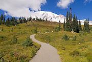 Mount Rainier from the Alta Vista Trail, Paradise Park, Mount Rainier National Park, Washington