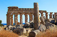 Greek Dorik Temple ruins of Temple F at Selinunte, Sicily Greek Dorik Temple columns of the ruins of the Temple of Hera, Temple E, Selinunte, Sicily .<br /> <br /> If you prefer to buy from our ALAMY PHOTO LIBRARY  Collection visit : https://www.alamy.com/portfolio/paul-williams-funkystock/selinuntetemple.html<br /> Visit our CLASSICAL WORLD HISTORIC SITES PHOTO COLLECTIONS for more photos to buy as buy as wall art prints https://funkystock.photoshelter.com/gallery-collection/Classical-Era-Historic-Sites-Archaeological-Sites-Pictures-Images/C0000g4bSGiDL9rw