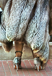 BUENOS AIRES, ARGENTINA:  A woman wears high heels and a furcoat while walking in Buenos Aires, Argentina. (Photo by Ami Vitale)