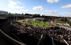 General view of the parade Ring during day one of the Showcase at Cheltenham Racecourse