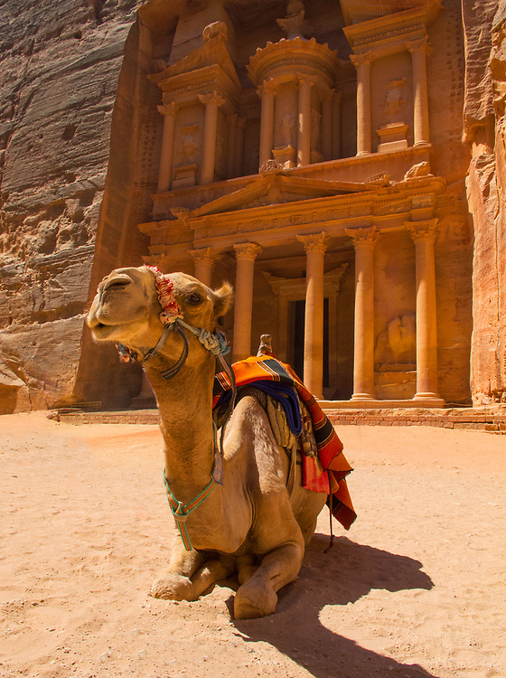 "One of the ""Seven Wonders of the World"" Al-Khazneh or The Treasury, Petra, Jordan with a camel standing guard"