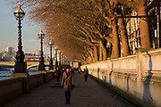 Winter light along the River Thames path on the South side at Westminster in London, England, United Kingdom.