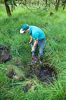 Conservation volunteers clearing out a ditch to establish the flow of water prior to blocking it up to help maintain the high water table necessary.