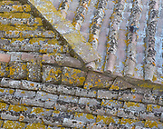 A yellow lichen-covered tile roof shows different patterns, angles, and lines in San Gimignana, Italy