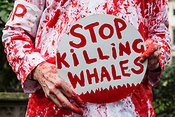 London, UK. 26th January, 2019. An animal rights campaigner daubed with red paint prepares to take part in the Japan: No Whaling march from Cavendish Square to the Japanese embassy following Japan's announcement that it withdraw from the International Whaling Commission (IWC) and resume commercial whaling with effect from July 2019. The march was organised by the London Committee for the Abolition of Whaling.