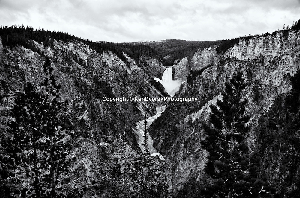 Teton/Yellowstone '13<br /> B&W conversion 9/27/13