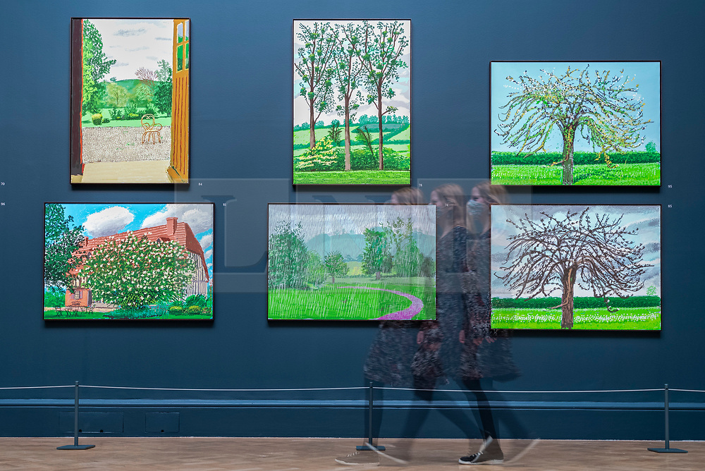 """© Licensed to London News Pictures. 18/05/2021. LONDON, UK.  Gallery staff pose at the preview of """"David Hockney: The Arrival of Spring, Normandy, 2020"""" at the Royal Academy of Arts in Piccadilly. The new body of work created by David Hockney RA, charts the unfolding and progression of spring in Normandy, with the works created during the beginning of the coronavirus pandemic.  Exhibited for the first time, the show runs from 23 May to 26 September 2021.  Photo credit: Stephen Chung/LNP"""