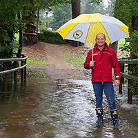 Rain - Mondial du Lion 2012