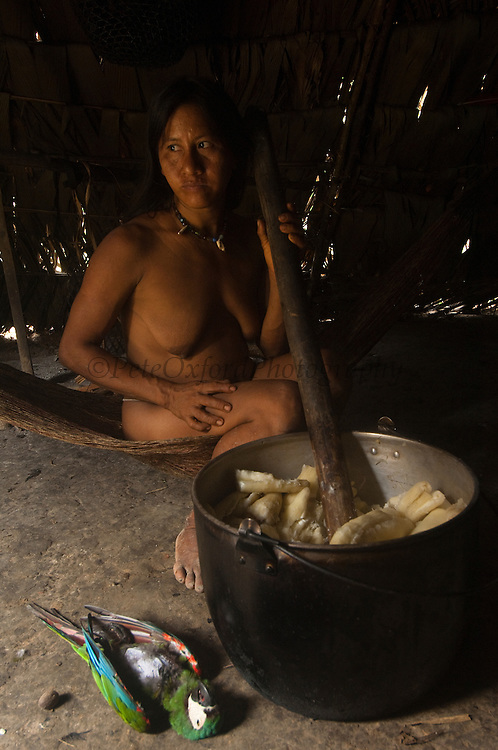 Huaorani Indian, Ewa Kemperi with macaw hunted for the pot.<br /> Bameno Community. Yasuni National Park.<br /> Amazon rainforest, ECUADOR.  South America<br /> This Indian tribe were basically uncontacted until 1956 when missionaries from the Summer Institute of Linguistics made contact with them. However there are still some groups from the tribe that remain uncontacted.  They are known as the Tagaeri & Taromenane. Traditionally these Indians were very hostile and killed many people who tried to enter into their territory. Their territory is in the Yasuni National Park which is now also being exploited for oil.