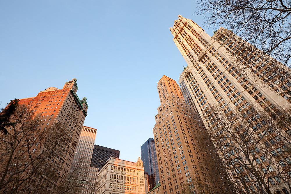 City skyline from City Hall Park at Tribeca district, Manhattan, New York City, United States